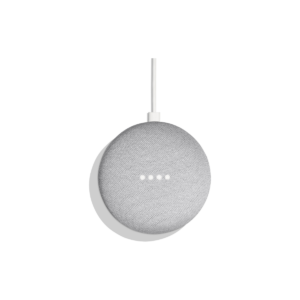 home assistant and google home mini